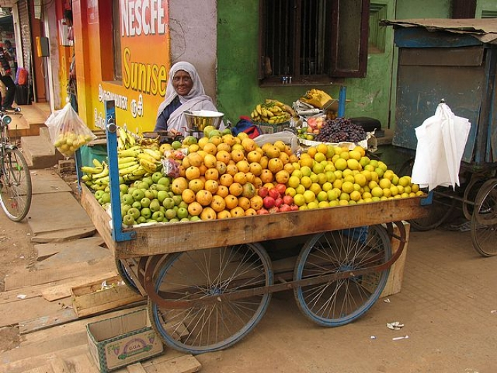 The informal sector includes a wide range of income-generating activities